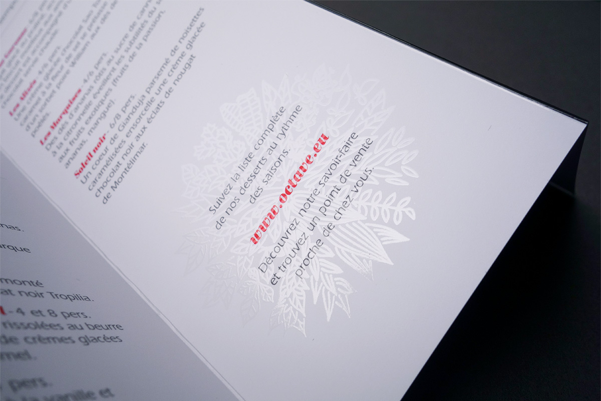 ys-octave-catalogues-2014-depliant-dessin