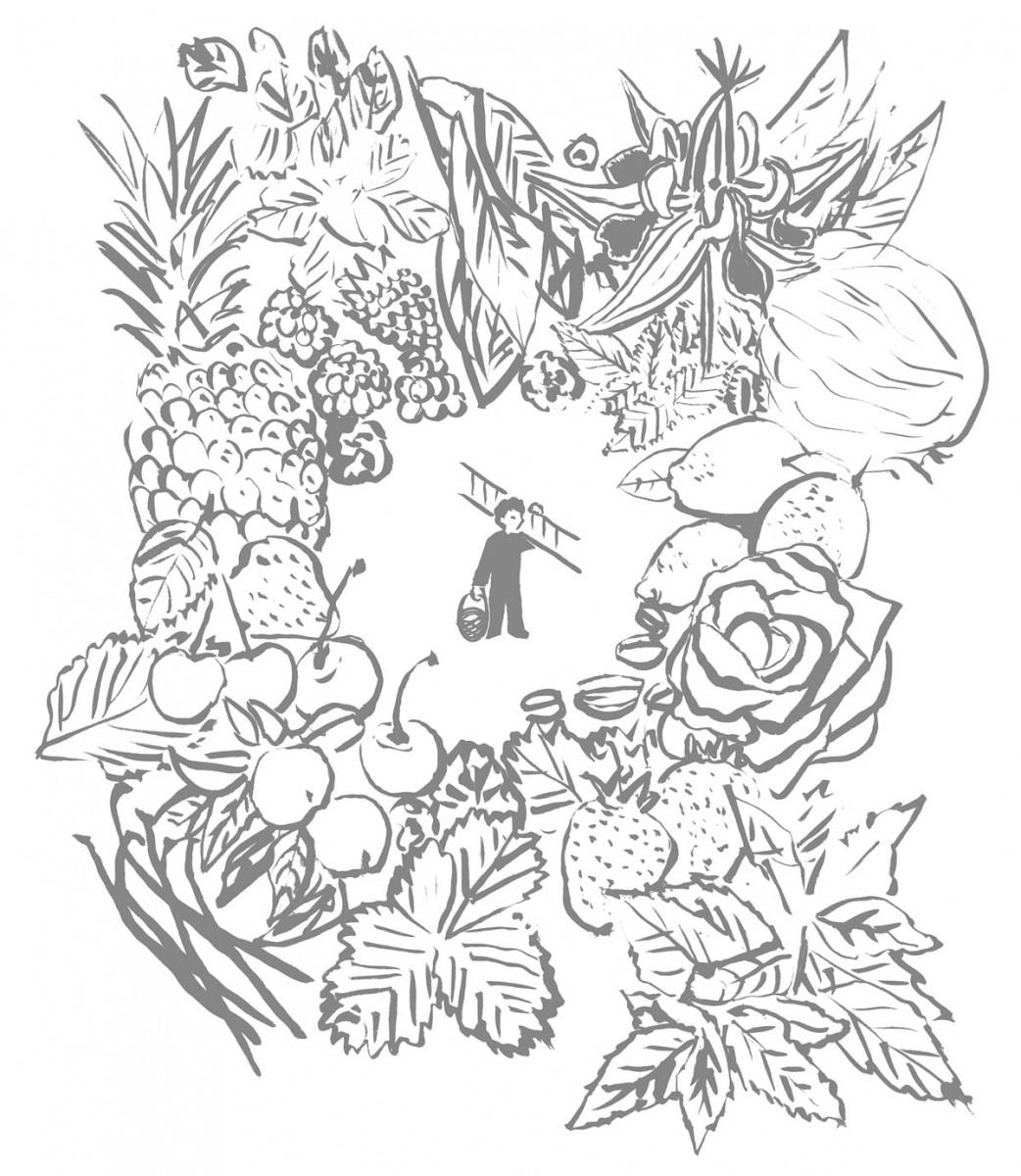 Illustration de couverture du catalogue Octave printemps été 2013